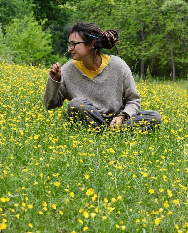 Andrea buttercups