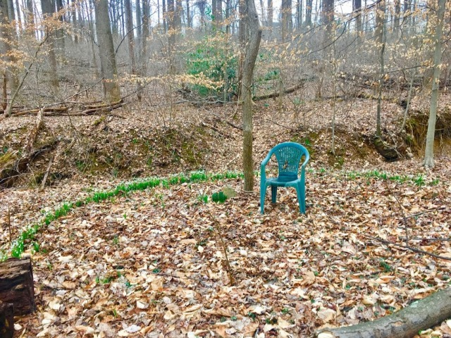 spsilly circle jims chair N snowdrops