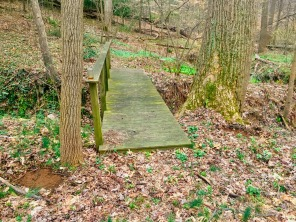 The woodland bridge crossing the stream at Grandpa's Creek trail... there's new wildflowers planted below the trees framing the bridge...